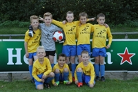 wvf voetbal westenholte 15 3