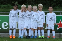 wvf voetbal westenholte 1 3