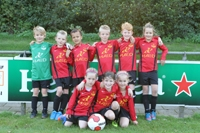 wvf voetbal westenholte 5 3