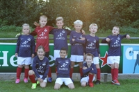 wvf voetbal westenholte 7 3